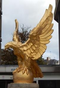 eagle00
